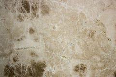 Matiz do verde da textura do travertino Fotos de Stock