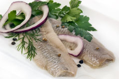 Matjes Herring Stock Images