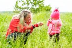 Matka łaskocze córki ostrze trawa w wysokiej trawie Fotografia Stock