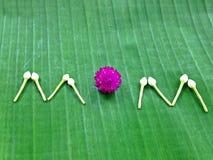 Matka dnia kwiaty jako symbole Tajlandia Zdjęcia Stock