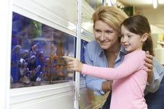 Matka I córka Wybiera Goldfish W zwierzę domowe sklepie Fotografia Royalty Free