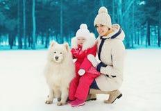Matka i dziecko z białym Samoyed psem w zimie zdjęcia stock