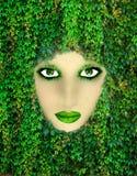 Matka natura Fotografia Stock
