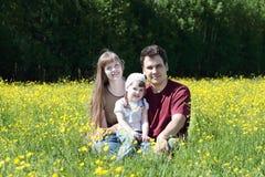 Matka, ojciec i córka wśród kolorów żółtych kwiatów przy łąką, Obrazy Stock