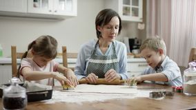 Matka pozwalał dzieci początek odróżnia się typ ciastka gotować spływową kamerę one whant zbiory wideo