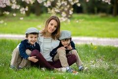 Matka z dwa dziećmi, chłopiec, czyta książce w czereśniowych bloss Obraz Royalty Free