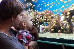 Matka z dzieckiem przy akwarium obraz royalty free