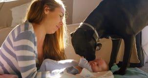 Matka z jej chłopiec i zwierzęcia domowego psem 4k zdjęcie wideo