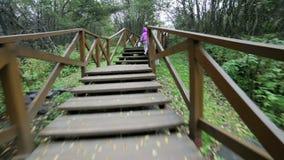 Matki i córki odprowadzenie wzdłuż drewnianej ścieżki zbiory wideo