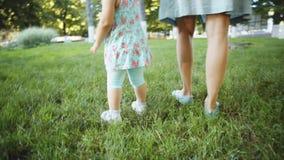 Matki i dziecka odprowadzenie na trawie zdjęcie wideo