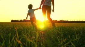 Matki i dziecka odprowadzenie na zielonej trawie przy zmierzchem Mama trzyma chłopiec ręką, ale no chce iść z ona zdjęcie wideo