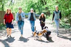 Matki z córkami chodzi z dwa psami na smyczach na pierwszych planach obrazy stock