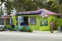 MATLACHA, FL - 18 DE ENERO DE 2016: Casa verde de madera coloreada en la isla de la isla de Matlacha, coral del cabo Imagenes de archivo