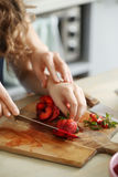 matlagning royaltyfri foto