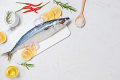 Matlagning för fiskmaträtt med olika ingredienser Ny dekor för rå fisk royaltyfri fotografi