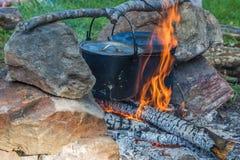 Matlagning i aktionen royaltyfri bild