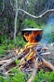Matlagning i naturen royaltyfri foto