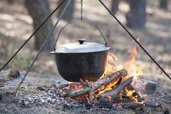 Matlagning i skogen. Arkivbild