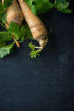 Matlagning med persilja rotar arkivfoto