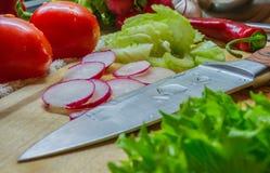Matlagning med stort plan för nya grönsaker Arkivfoto
