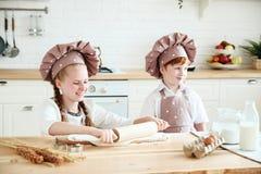 Matlagning med ungar royaltyfria foton