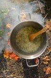 Matlagning på en picknick - brynt lök i en panna Arkivbilder