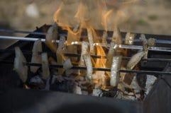 Matlagning på naturen Stekhet smaklig bacon på fyrpannan med brasan och kol Royaltyfria Foton
