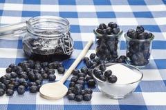 Matlagningblåbärdriftstopp Fotografering för Bildbyråer