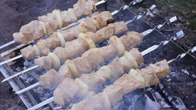 Matlagningkebab på steknålar Grillat kött på mangal Matlagninglammkött på varmt kol Traditionell picknickmaträtt grilla stock video