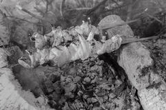 Matlagningkebabgrillfest på gallret svart white Fotografering för Bildbyråer