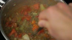 Matlagninglinssoppa med tomater och grönsaker stock video