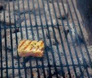 Matlagningtonfisk på gallret royaltyfri foto