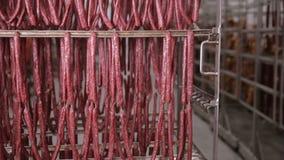 Matlagring, lager Köttprodukter korvar som hänger på kuggar i ett köttlager, frys stock video