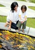 Matning av fisken Royaltyfri Fotografi