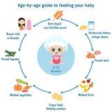 Matning behandla som ett barn infographics vektor illustrationer
