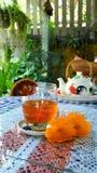 Matoom del té Imágenes de archivo libres de regalías