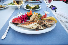 Maträtt av fisken på en platta med grönsaker royaltyfria foton