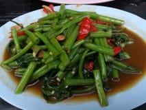 Maträtt av grönsaken Royaltyfria Foton