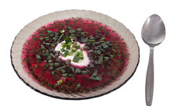 Maträtt av klart grått exponeringsglas, kall betasoppa, rysk borscht Royaltyfri Foto