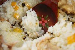 Maträtt av ris med kött royaltyfria foton