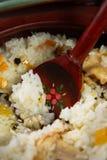 Maträtt av ris med kött fotografering för bildbyråer