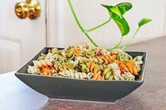Maträtt för Macaronisalladsida Arkivfoto