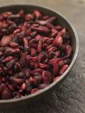 maträtt torkat pomegranatefrö Royaltyfri Bild