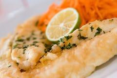 maträttfisk arkivfoton