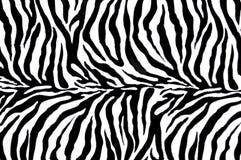 Matéria têxtil da zebra Imagem de Stock