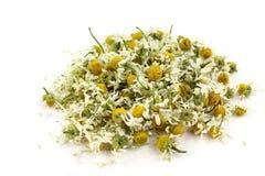 Matricaria chamomilla, medical chamomile dried. Medical Chamomile dried - herb, flower lying on a white background Stock Photo