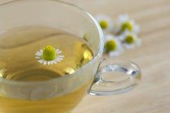 Matricariachamomillablommor och trasparent kopp te på trätabellen, växt- medicin för ny blomning arkivbilder