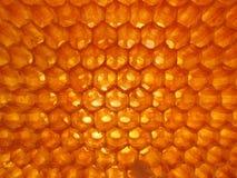 Matrice d'hexagone de nid d'abeilles image libre de droits