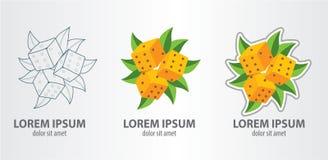 Matrices de logo Images stock