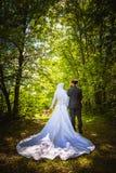 Matrimonio algerino e canadese Fotografie Stock Libere da Diritti